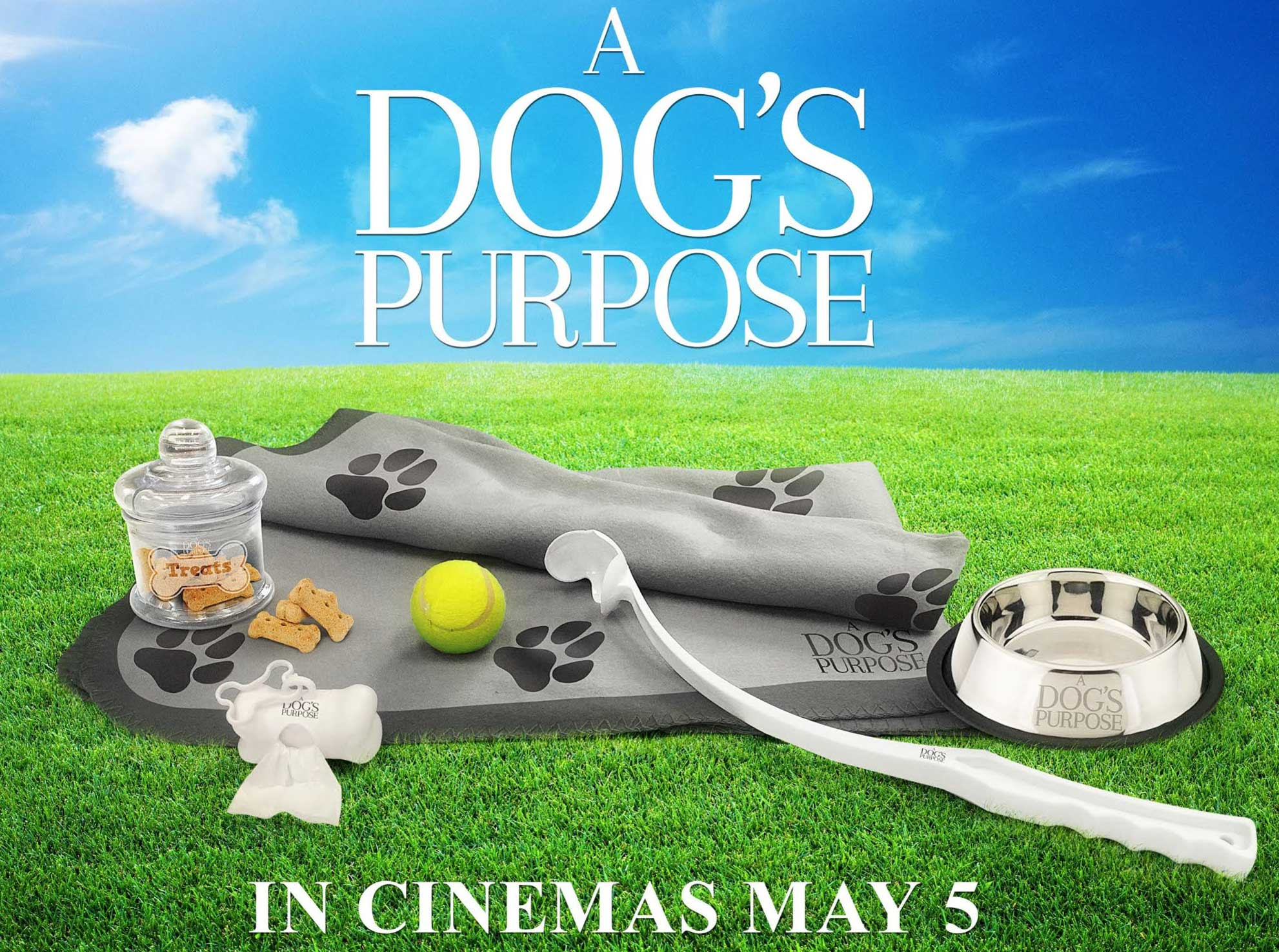 Dogs Purpose Prizes